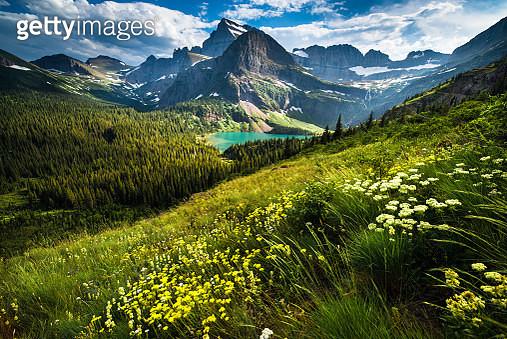 Lake, Mountain, Rock - Object, Rocky Mountains, Summer - gettyimageskorea