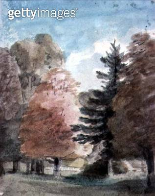 Study of Trees in a Park (watercolour) - gettyimageskorea