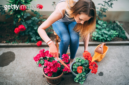 Cheerful woman repotting plants in the back yard - gettyimageskorea