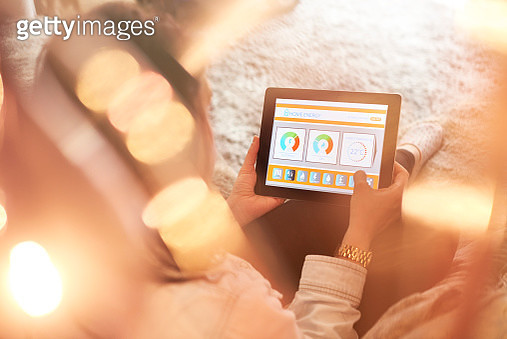 Female home owner checking energy consumption - gettyimageskorea