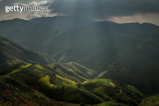 A rice paddy field in Yen Bai Province, Vietnam. - gettyimageskorea