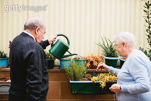 Senior couple gardening on balcony - gettyimageskorea