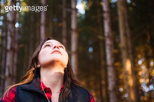 A fall walk in an arboretum - gettyimageskorea