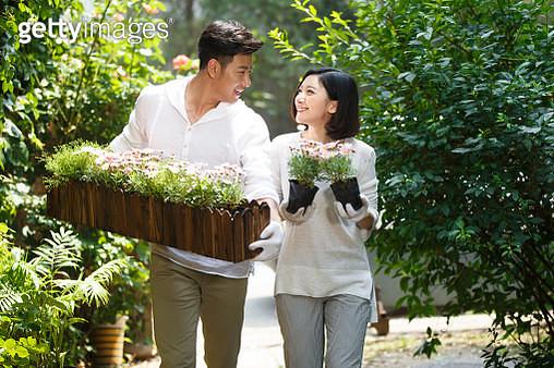 Young couple gardening in backyard - gettyimageskorea