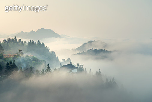 The morning mist - gettyimageskorea