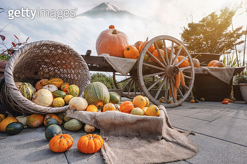 Autumn Halloween, Pumpkins. Ripe autumn vegetables in a old wooden cart and Mt. Fuji as background - gettyimageskorea