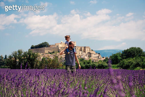 France, Grignan, father carrying little daughter on his shoulders through lavender field - gettyimageskorea