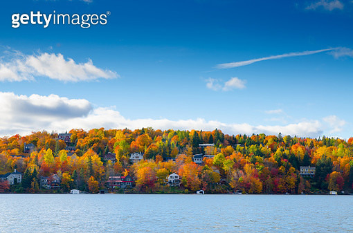 Colorful trees in mountain with green, yeloow, orange and red leaves with lake in foreground. - gettyimageskorea