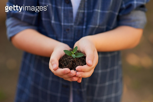 Plant today and watch it prosper tomorrow - gettyimageskorea