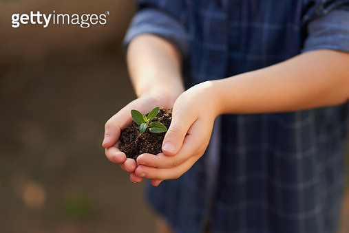 Children will plant the seeds of the future - gettyimageskorea