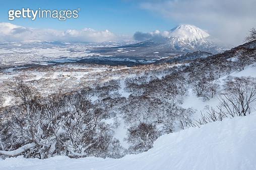 Winter wonderland in Niseko - gettyimageskorea