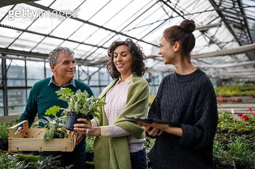Woman salesperson serving customers in garden center - gettyimageskorea