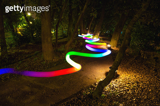 Colorful light trail following the way between trees at night. - gettyimageskorea