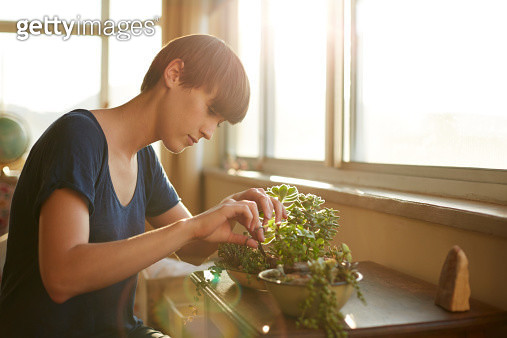 Young woman trimming her plants at home - gettyimageskorea