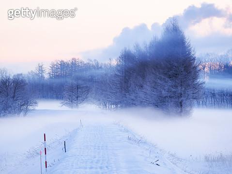 landscape in winter - gettyimageskorea