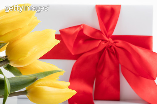 Close-Up Of Yellow Tulips And Gift Box Against White Background - gettyimageskorea