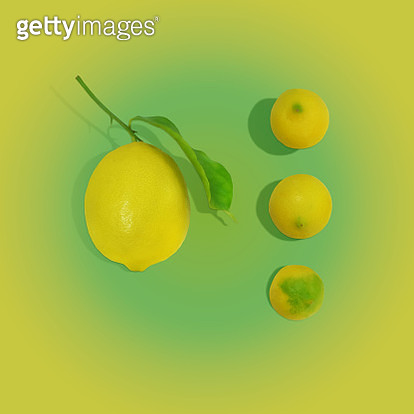 Group of small and large lemons on gradient background with shadow - gettyimageskorea