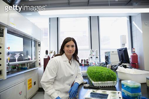 Portrait confident scientist conducting GMO experiment in laboratory - gettyimageskorea