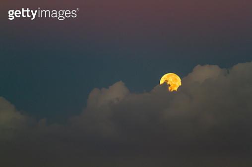 Tropical Moon - gettyimageskorea