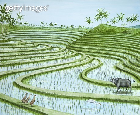 The Padi Field Paddlers/ 2011 (oil on linen) - gettyimageskorea