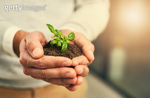 Growth happens when you nurture it - gettyimageskorea