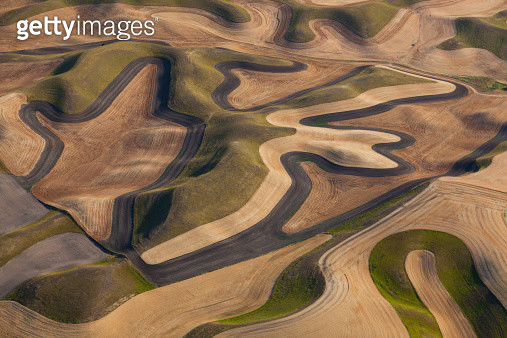 Farmland landscape, with ploughed fields and furrows in Palouse, Washington, USA. An aerial view with natural patterns. - gettyimageskorea