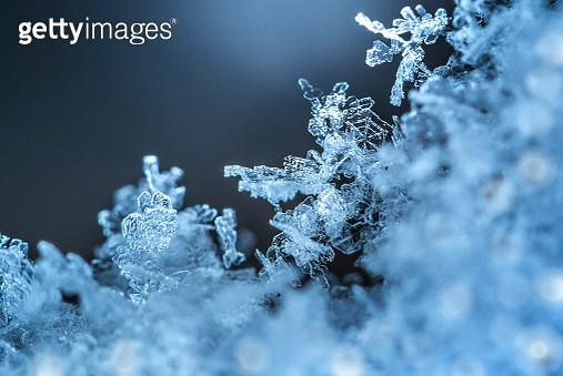 Snowflakes06 - gettyimageskorea