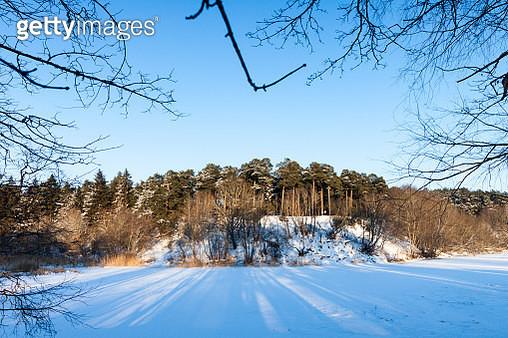 frozen river and trees in winter season in northen europe - gettyimageskorea