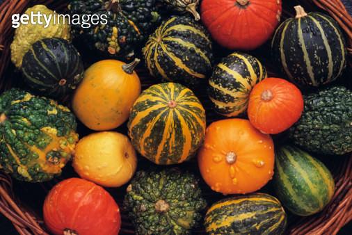 Gourds in basket - gettyimageskorea