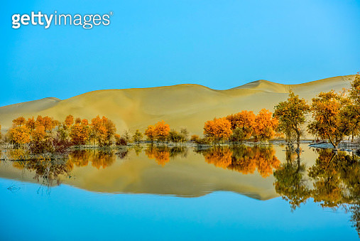 Trees and hills by lake in autumn, Kelamayi, Xinjiang Uygur Autonomous Region, China - gettyimageskorea