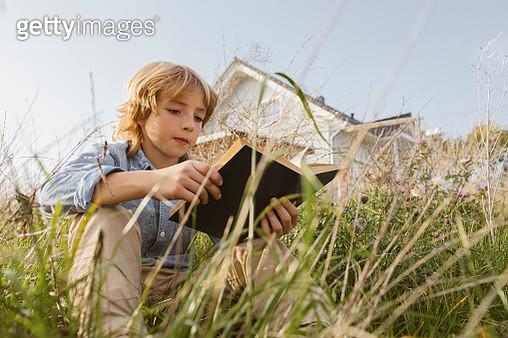 Portrait of a boy sitting on a meadow reading a book - gettyimageskorea