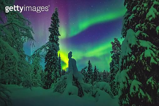 The Dream of Lapland - gettyimageskorea