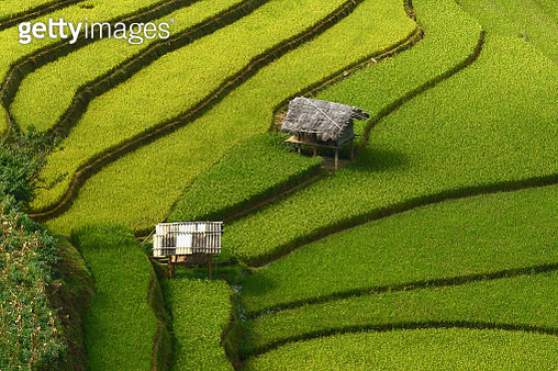 Two HOME - gettyimageskorea