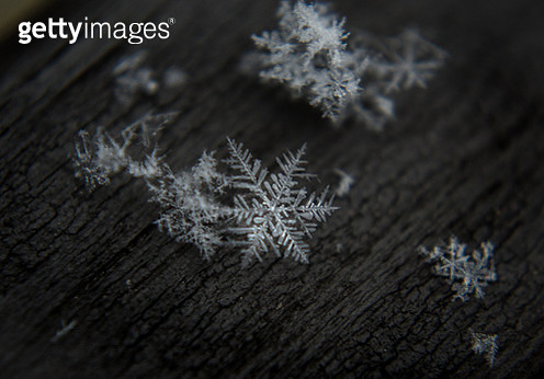 Snowflake close-up - gettyimageskorea