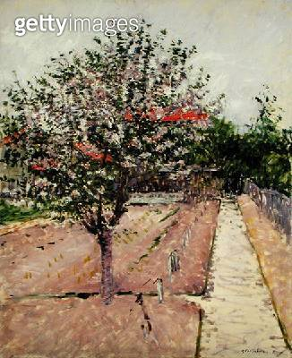 <b>Title</b> : Apple Tree in Blossom, c.1885 (oil on canvas)<br><b>Medium</b> : oil on canvas<br><b>Location</b> : Brooklyn Museum of Art, New York, USA<br> - gettyimageskorea