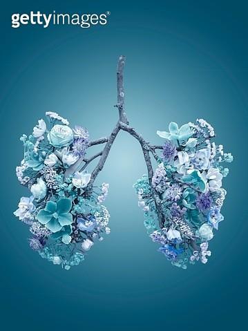 Spring flowers representing human lungs - gettyimageskorea