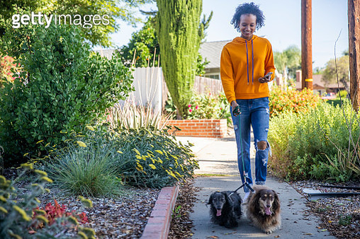 A young black woman walking dogs while holding a smartphone - gettyimageskorea