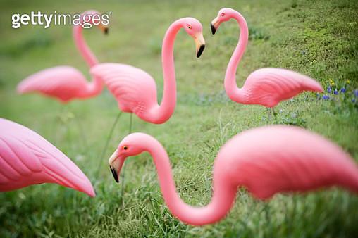 Flamingo Garden Ornaments - gettyimageskorea