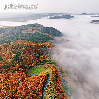 Autumn forest road go down into morning fog. Mosele Valley, Germany. - gettyimageskorea