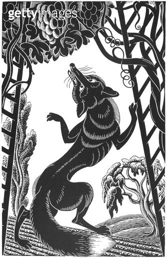 AESOP: FOX & GRAPES. /n'The Fox and the Grapes.' Woodcut by Boris Artzybasheff (1899-1965). - gettyimageskorea