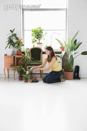 Woman tending potted plants by window - gettyimageskorea