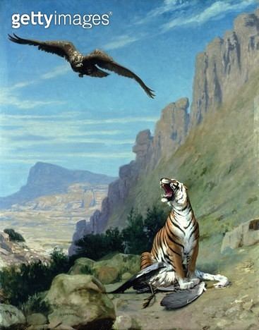 <b>Title</b> : Tiger And Vulture (oil on canvas)<br><b>Medium</b> : oil on canvas<br><b>Location</b> : Private Collection<br> - gettyimageskorea