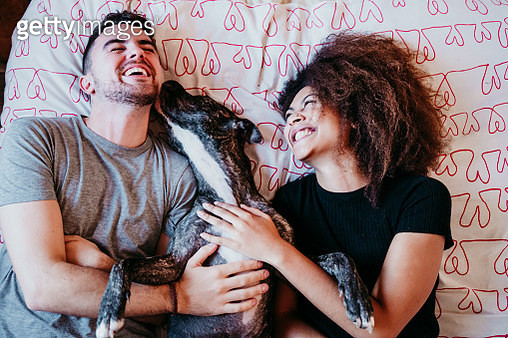 Laughing Couple Lying On Bed With Dog At Home - gettyimageskorea