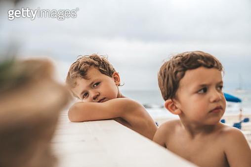 Bos waiting at restaurant table at the beach - gettyimageskorea