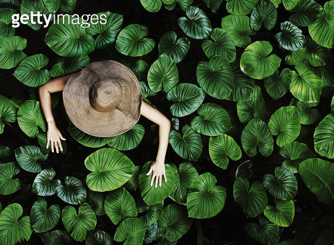 Thai woman with tropical leaves - gettyimageskorea