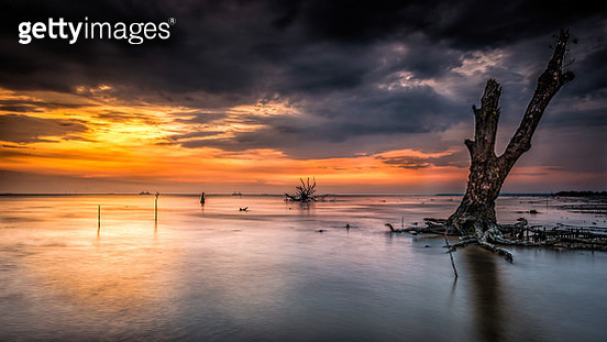 The world ends_2 - gettyimageskorea