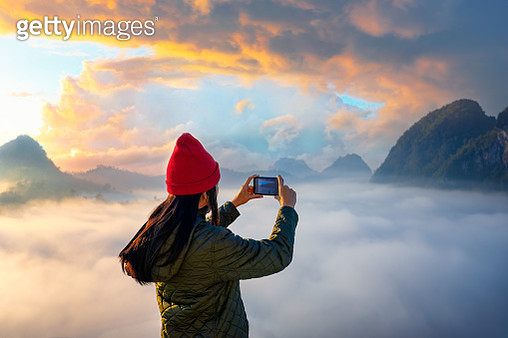 In the morning Nature - gettyimageskorea