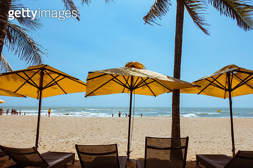 Umbrellas and sun loungers on the beach with coconut palm trees - gettyimageskorea
