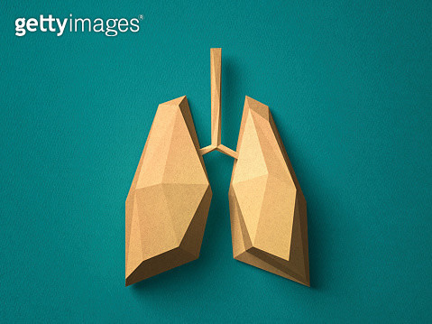 Paper craft Lung - gettyimageskorea