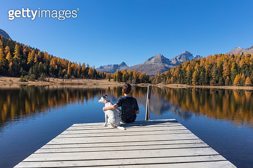 A child and a dog are looking at Lake Staz in Switzerland. Large file - gettyimageskorea